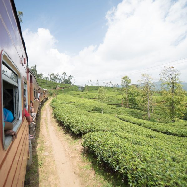 Sri Lanka, travel, destination, travel blogger, outlanderly, Ella, beaches, scenery, hiking, mountains, trains