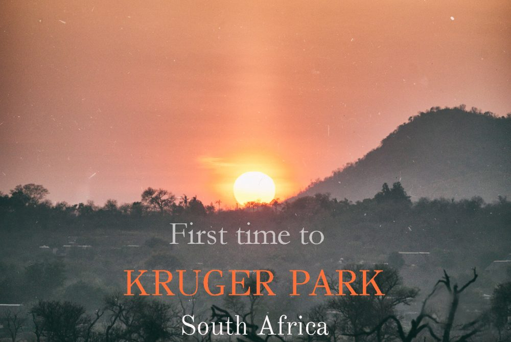 First time to Kruger national park, South Africa, Outlanderly