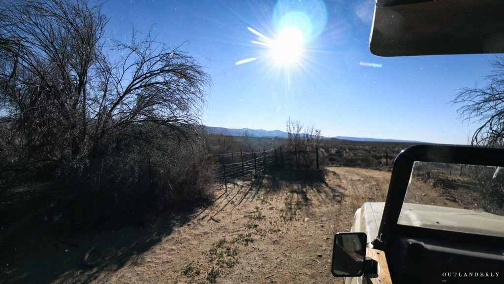 Safari drive at the Inverdoorn Game reserve