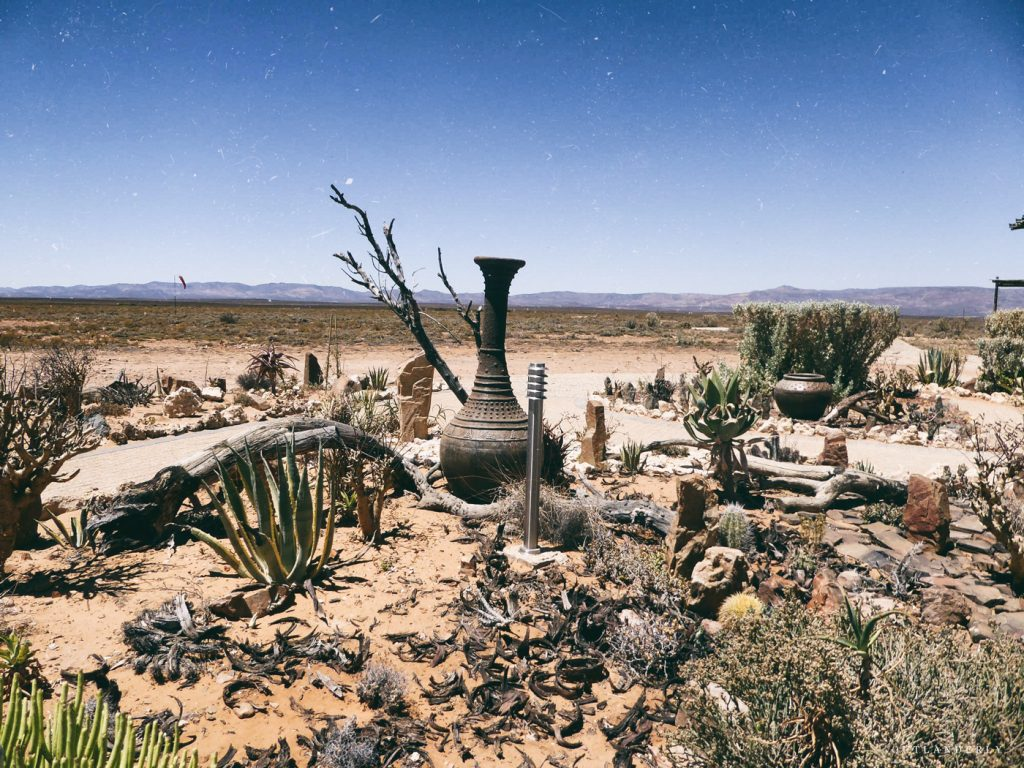 The cactus garden at the Inverdoorn reserve, african theme design