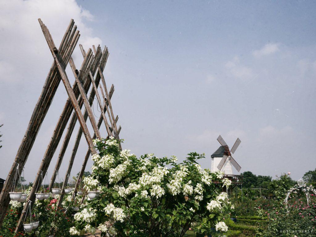 Nhat Tan Flower Village Garden in Hanoi